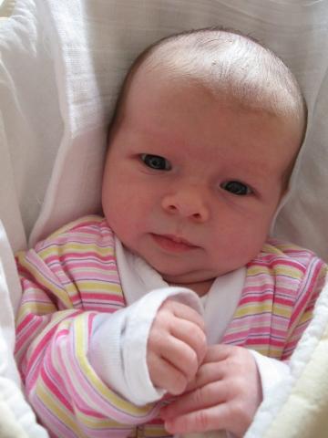 Alžbetka - január 2012